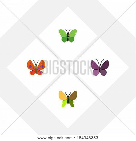 Flat Butterfly Set Of Moth, Beauty Fly, Violet Wing And Other Vector Objects. Also Includes Moth, Insect, Butterfly Elements.