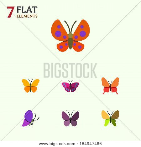 Flat Monarch Set Of Moth, Archippus, Butterfly And Other Vector Objects. Also Includes Summer, Archippus, Insect Elements.