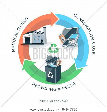Vector illustration of circular economy showing product material flow and garbage on white background with arrows and circle. Products are manufactured. After use collected in recycle dust bin as trash and recycled. Waste recycling management concept. Pro