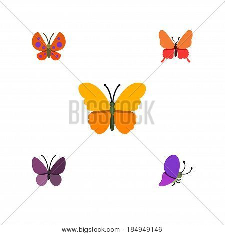 Flat Moth Set Of Moth, Danaus Plexippus, Violet Wing And Other Vector Objects. Also Includes Summer, Moth, Insect Elements.