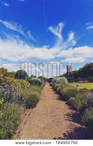 Beautiful Scenery In London Hyde Park