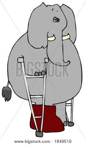 Elephant On Crutches