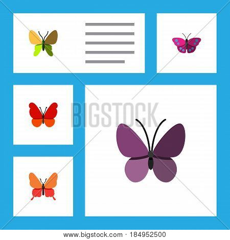 Flat Moth Set Of Monarch, Beauty Fly, Violet Wing And Other Vector Objects. Also Includes Moth, Butterfly, Insect Elements.