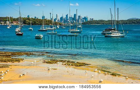 Camp Cove Beach in Sydney New South Wales Australia