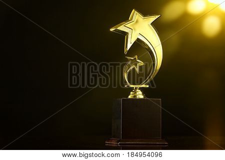 low key of trophy over dark background.