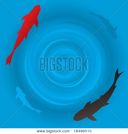 Raster - Japanese koi or carp fish swimming in a circle. poster