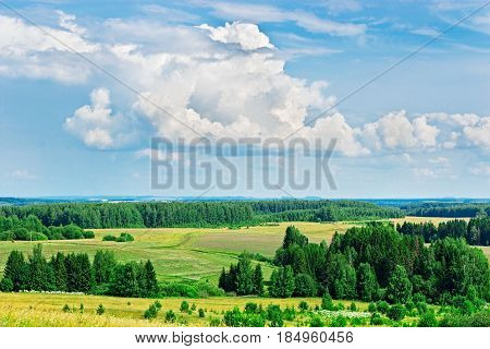 Landscape with meadow and forest in the distance