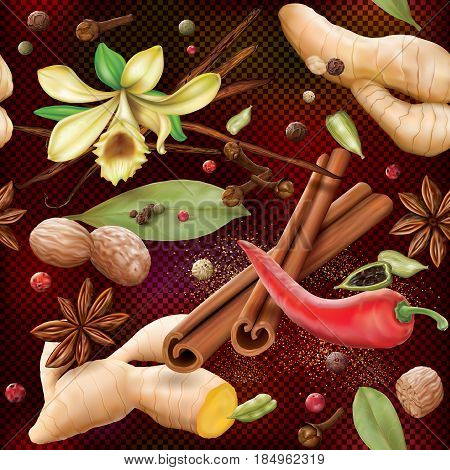 Aromatic different spices on a dark transparent background. Vector illustration