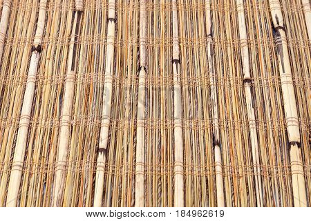 Textures of vintage indigenous bamboo soft wood