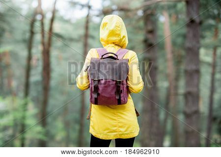 Young woman in yellow raincoat standing with backpack in the green pine forest