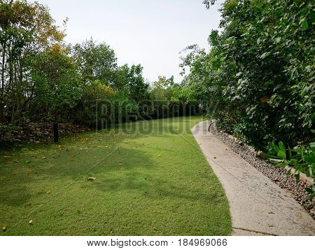 Pathway along side with trees and lawn in the park.
