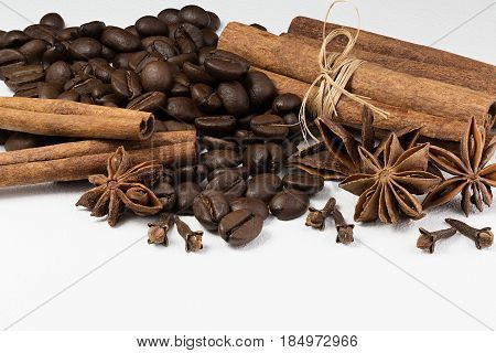 Cardamom, grains of coffee and cinnamon on a white background