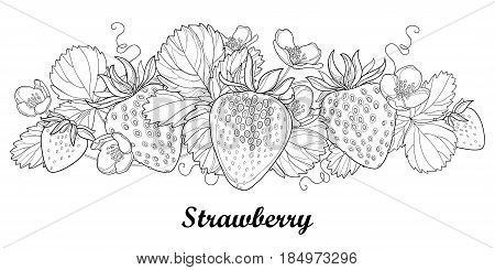 Vector horizontal border with outline Strawberry with berry, flower and foliage in black isolated on white. Fruit elements with strawberry in contour style for summer design and adult coloring book.