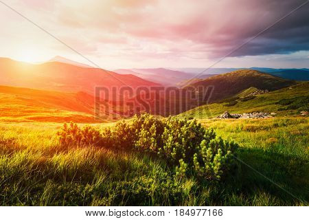 Mountain valley during sunset. Amazing nature scene glowing by sunlight. Located place: Carpathians, Ukraine, Europe