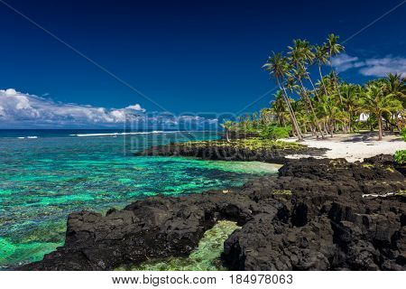 Coral reef on south side of Upolu, Samoa Islands.