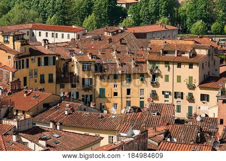 Historic buildings in Piazza dell'Anfiteatro (Amphitheater Square - aerial view) in the ancient town of Lucca Toscana (Tuscany) Italy Europe