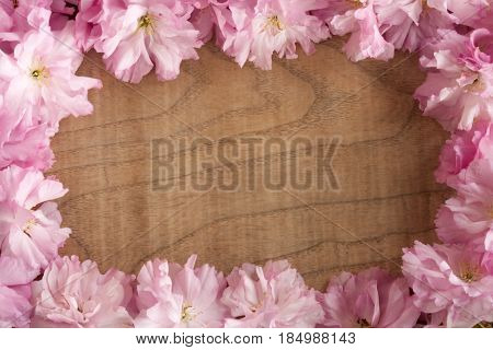 Pink Kwanzan Cherry Blossoms On A Wooden Background With Copy Space