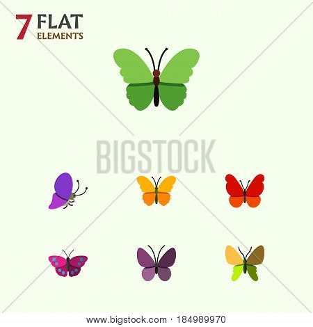 Flat Butterfly Set Of Beauty Fly, Butterfly, Monarch And Other Vector Objects. Also Includes Summer, Butterfly, Monarch Elements.