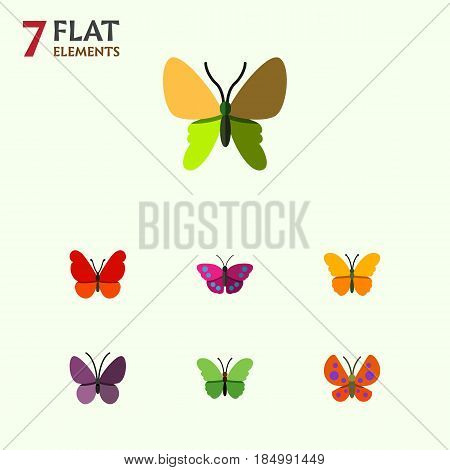 Flat Monarch Set Of Milkweed, Butterfly, Beauty Fly And Other Vector Objects. Also Includes Insect, Archippus, Summer Elements.