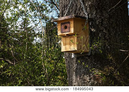 Wooden nest box on a tree self-made bird shelter environmental protection in the garden and park copy space