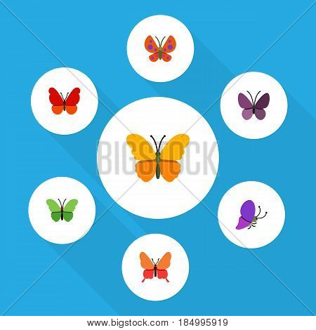 Flat Monarch Set Of Danaus Plexippus, Moth, Monarch And Other Vector Objects. Also Includes Moth, Summer, Monarch Elements.