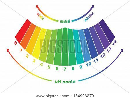 pH scale value , vector isolated colorful