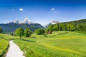 Idyllic summer landscape in the Alps Nationalpark Berchtesgadener Land Bavaria Germany poster
