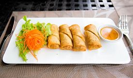 Plate with asian style spring rolls with vegetables