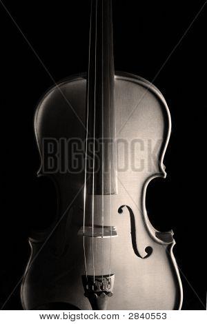 Violin In Shadow