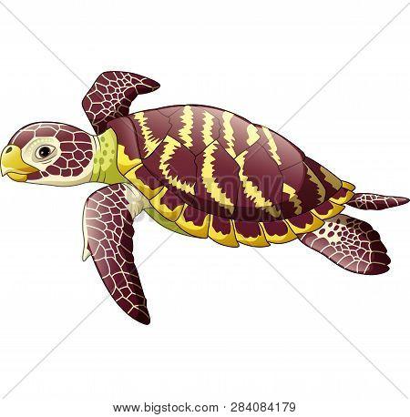 Vector Illustration Of Cartoon Sea Turtle Isolated On White Background