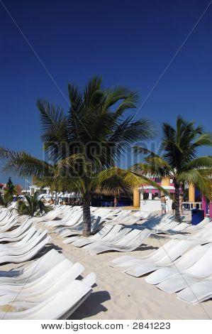 Caribbean Beach - Sunbathe In Paradise