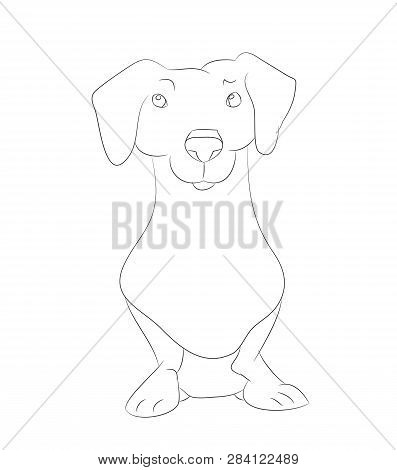 Dachshund Illustration Images Illustrations Vectors Free