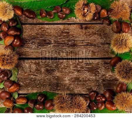 Frame of chestnuts, leaves and chestnut bur on wooden table. poster