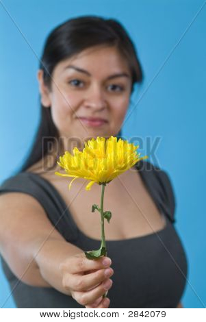 A Flower For You.1
