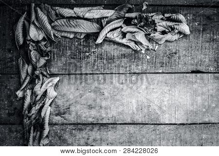 Close Up Of English Letter L Formation On A Rough Wooden Surface With Dried Leaves