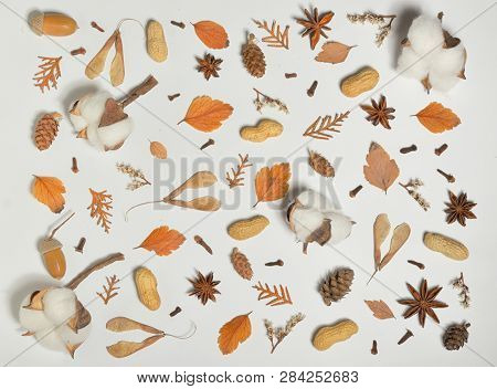 Autumn Concept With Cotton Buds On White Paper
