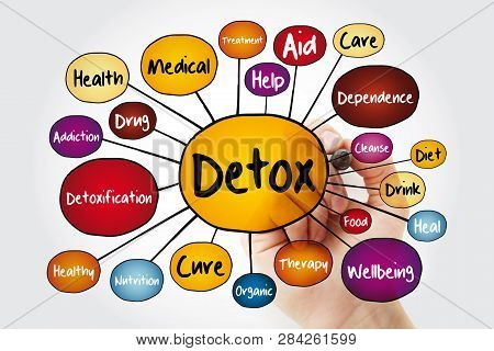 Detox Mind Map Flowchart With Marker, Health Concept For Presentations And Reports