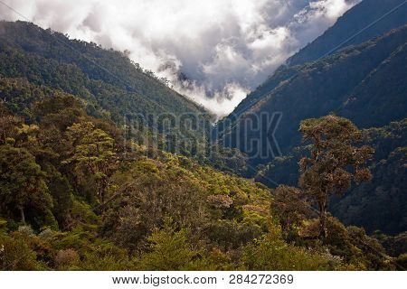Steep Slopes Of Costarican Mountains Covered By Rainforest