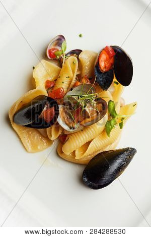 Pasta shells with a variety of mussels