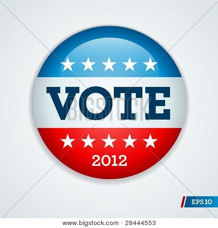 Election Campaign Button 2012