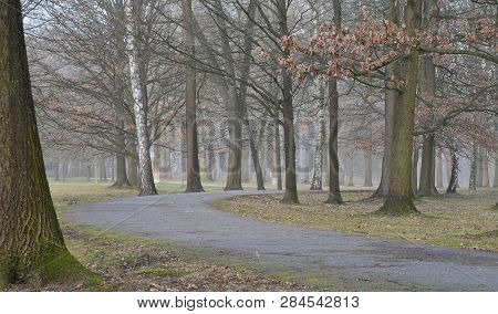 Stromovka Is The Largest Park In The Area Of 68 Hectares In Ceske Budejovice, South Bohemia, Czech
