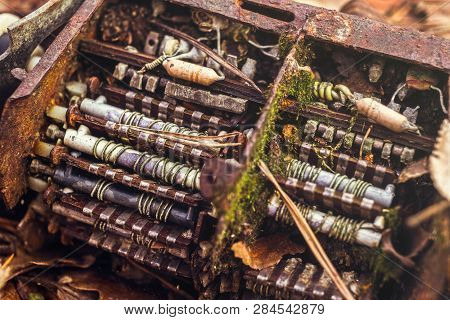 Old Tv Tuner Channel Selector With Moss In Fall Leaves