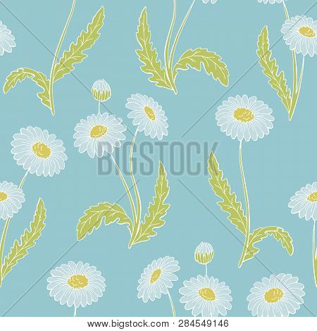 Chamomile Flower Graphic Color Seamless Pattern Background Sketch Illustration Vector