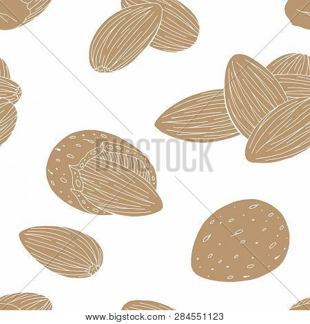 Almond Nut Graphic Color Seamless Pattern Background Sketch Illustration Vector
