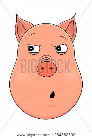 Head Of Pig In Cartoon Style. Vector Illustration. Woodland Animal Head Icon. Paranoid Pig. Pig Emot