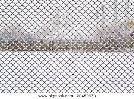 Wire Covered With Frost, A Major Plan