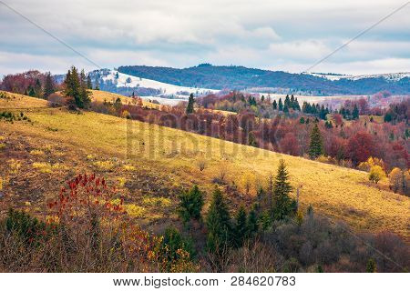 Late Autumn In Mountains. Meadow With Weathered Grass And Trees In Fall Color. Distant Hills In Snow