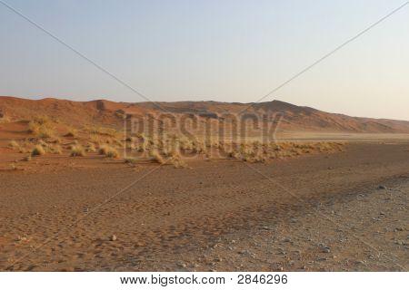 Wild Pre Namib