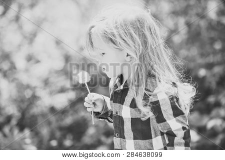 Childhood, Future, Growth Concept. Child Blow Dandelion In Spring Or Summer Park. Freedom, Activity,