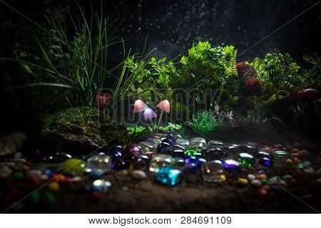 Fantasy Glowing Image & Photo (Free Trial) | Bigstock